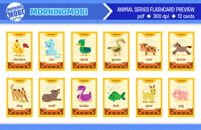 Flash Card for kids