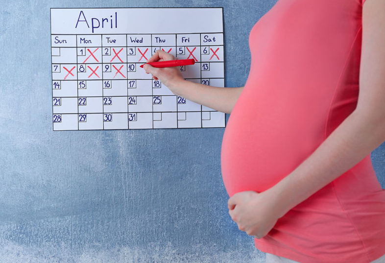 pregnancy week by week in hindi